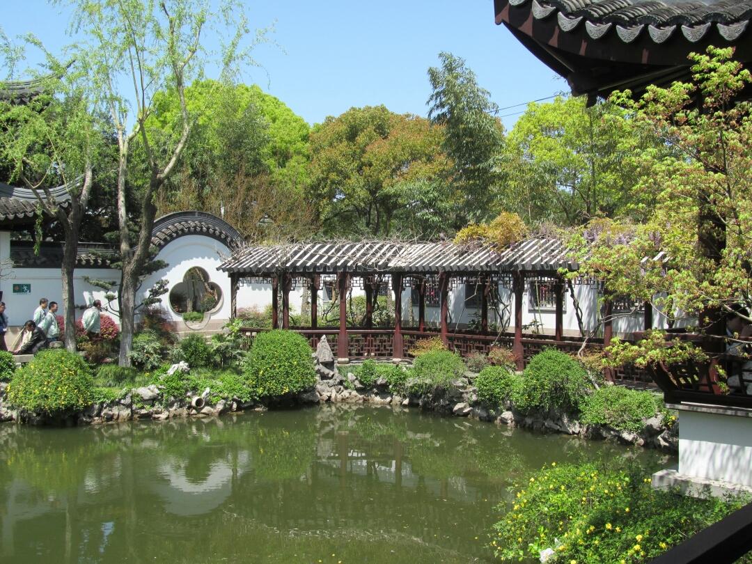 游闵行古藤园留影                       《习作四》