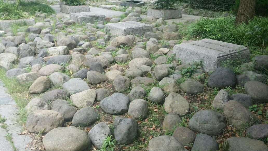 普陀春潮---游长寿健康主题公园   附:顾正红纪念馆                         《习作九》