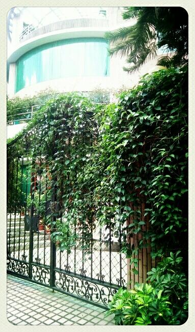 自然生命形式一别墅生态