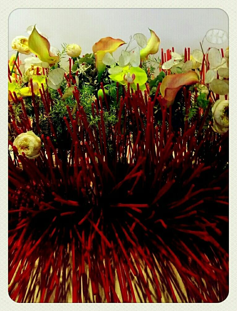 自然生命形式一中国传统插花二 六十八盆丨传统插花 献给祖国丨恭贺中秋