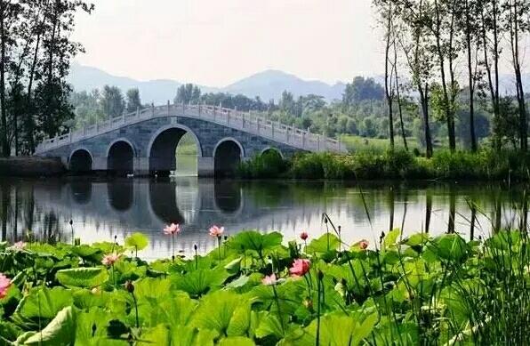 中国的桥上, 有最美的风景,最浪漫的前世今生