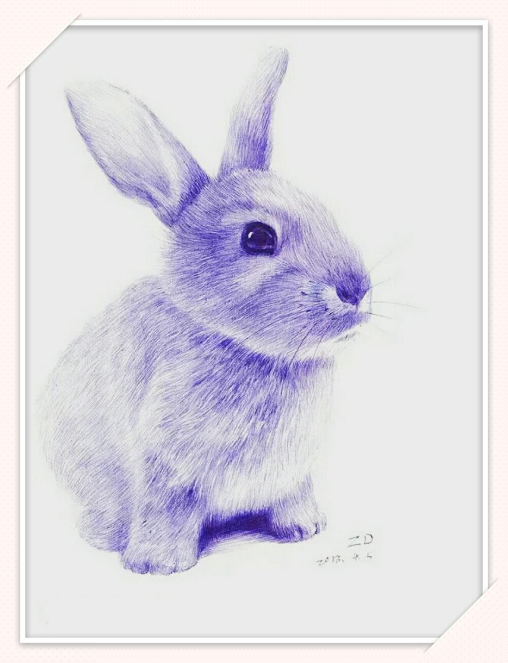 圆珠笔画(动物篇)