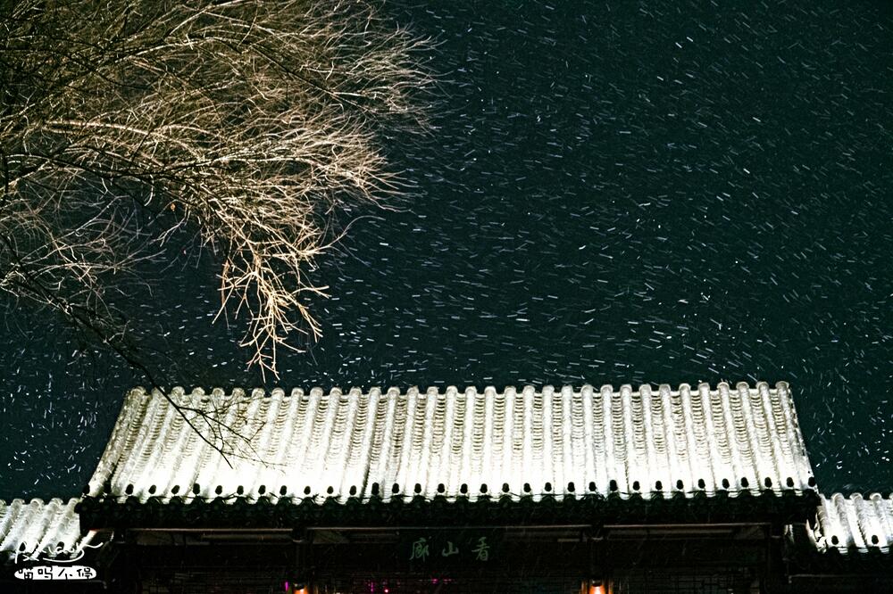 昨晚暴雪前实拍:南京玄武湖上空的雪花像亿万精灵在狂舞,简直美呆了!