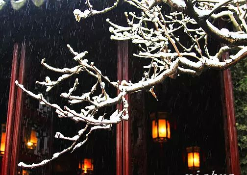 江南雪 轻素剪云端 多情最是江南雪