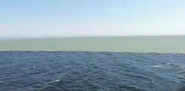 世界上最神奇的景观   两片 海水 无法 融合      连科学家都无法解释
