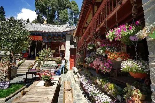 中国最美尼姑庵 不烧香只种花