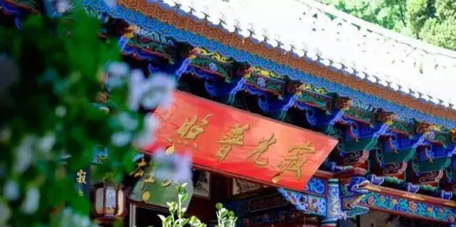 中国最美的尼姑庵,不烧香只种花, 看一眼就想出家!韩红也慕名而来!