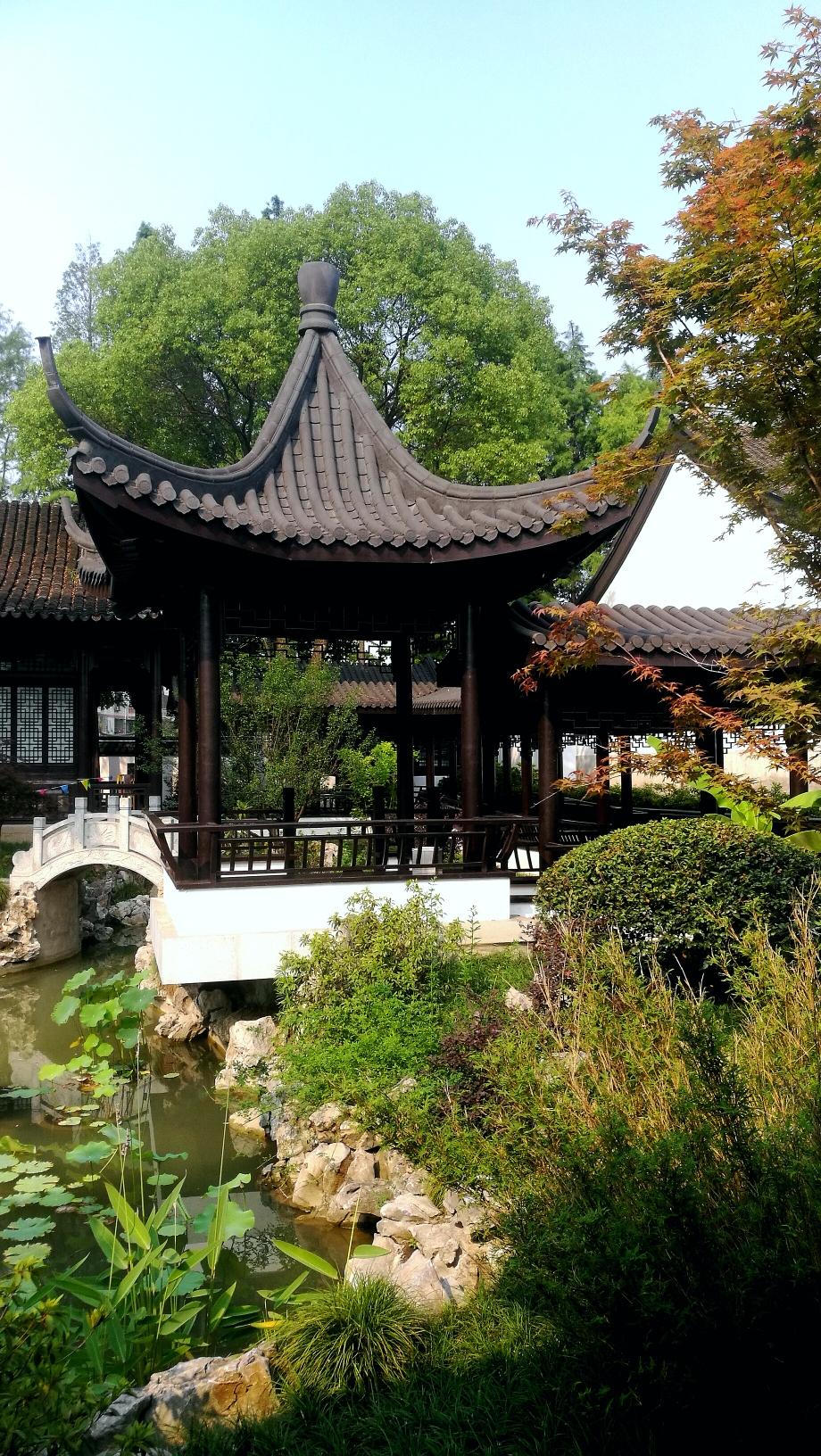 仲夏之鳳凰公园
