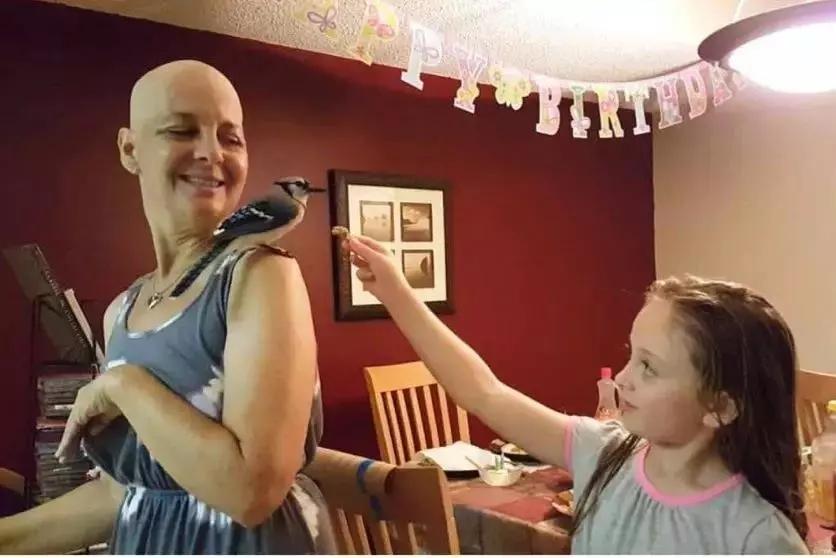 世上  最暖报恩        3年前她救了    一只鸟     患癌后鸟儿竟        救活   姑娘