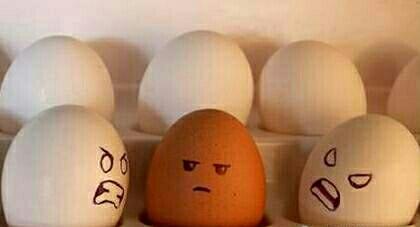【健康】蛋黄好还是蛋白好?一天能吃几个蛋?大多数人都错了