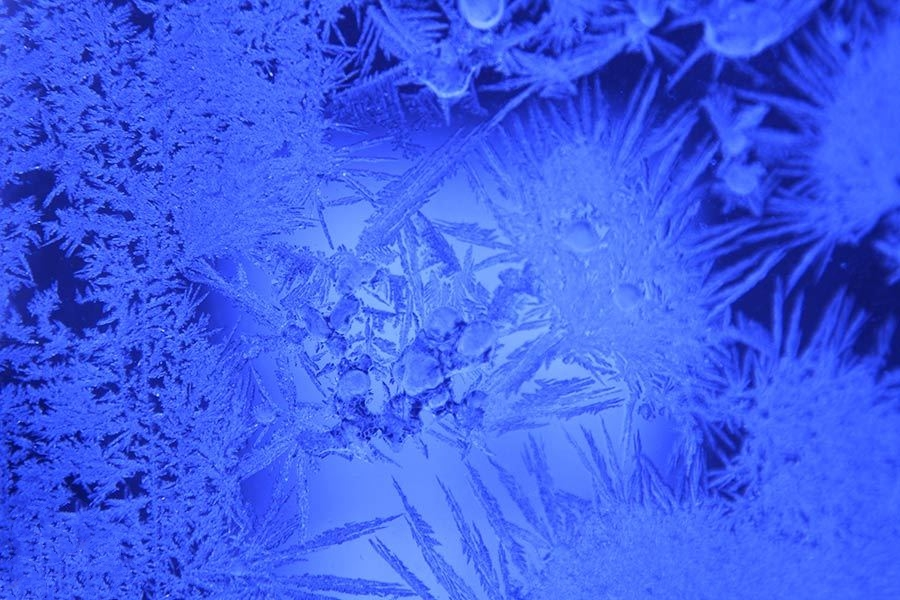 冰冻窗花,千姿百态! 美轮美奂•百看不厌