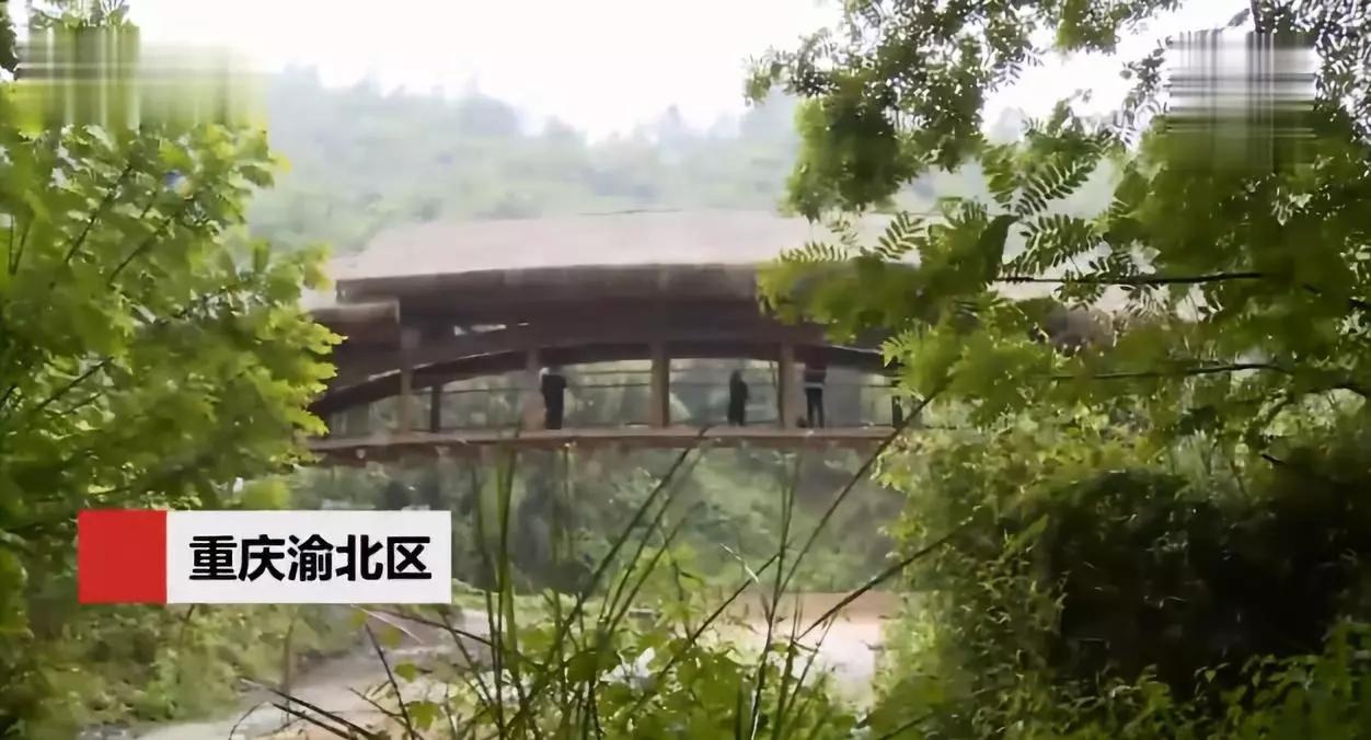 重庆农村 用716根 竹子造桥 竟获建筑界 奥斯卡