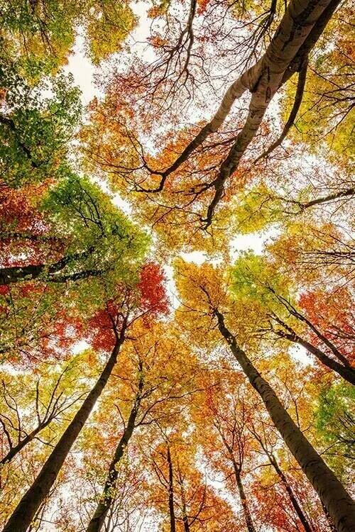 多彩的大自然,让人沉醉