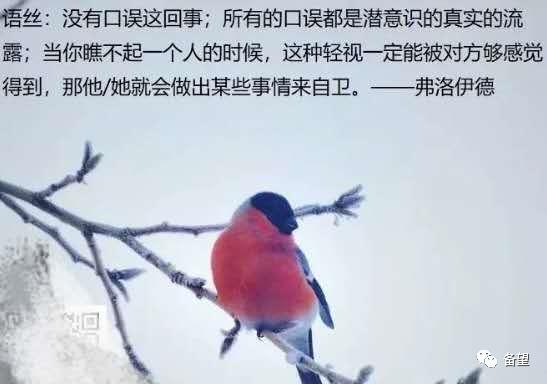 在乌鸦掌控的世界里     洁白的羽毛是有罪的       ……       好    帖    分    享