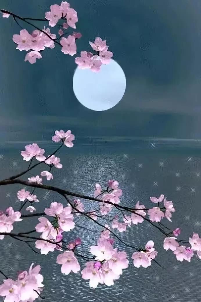 最美中秋诗词 祝君佳节快乐