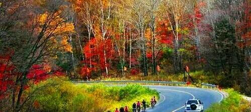 中国10条让人欲罢不能的 魔鬼公路 美上天了